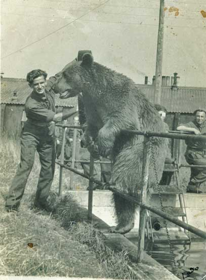 Wojtek at the Edinburgh Zoo with an old army comrade.
